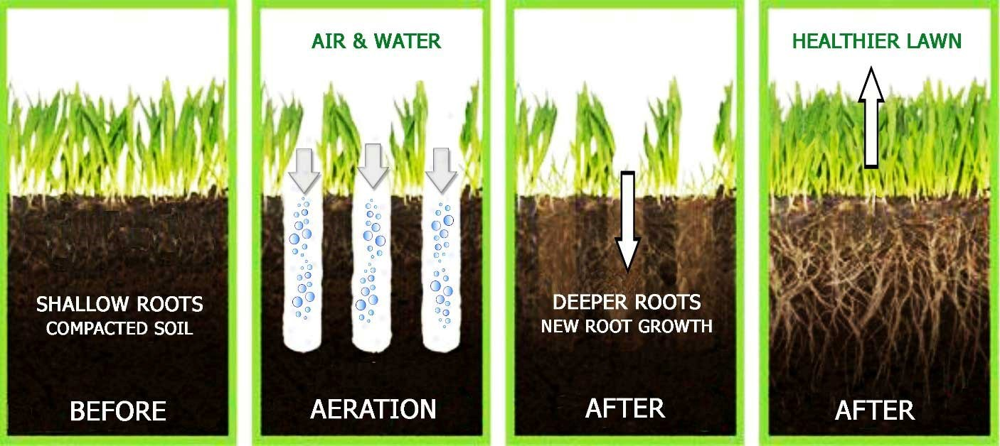 Aeration graphic