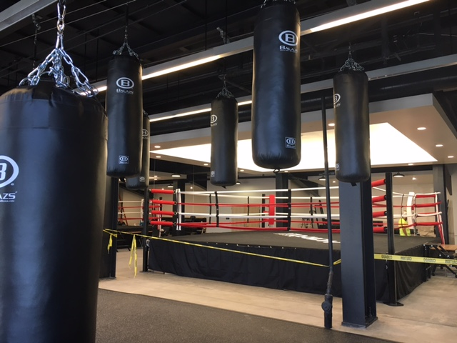 Hanging Punching Bags