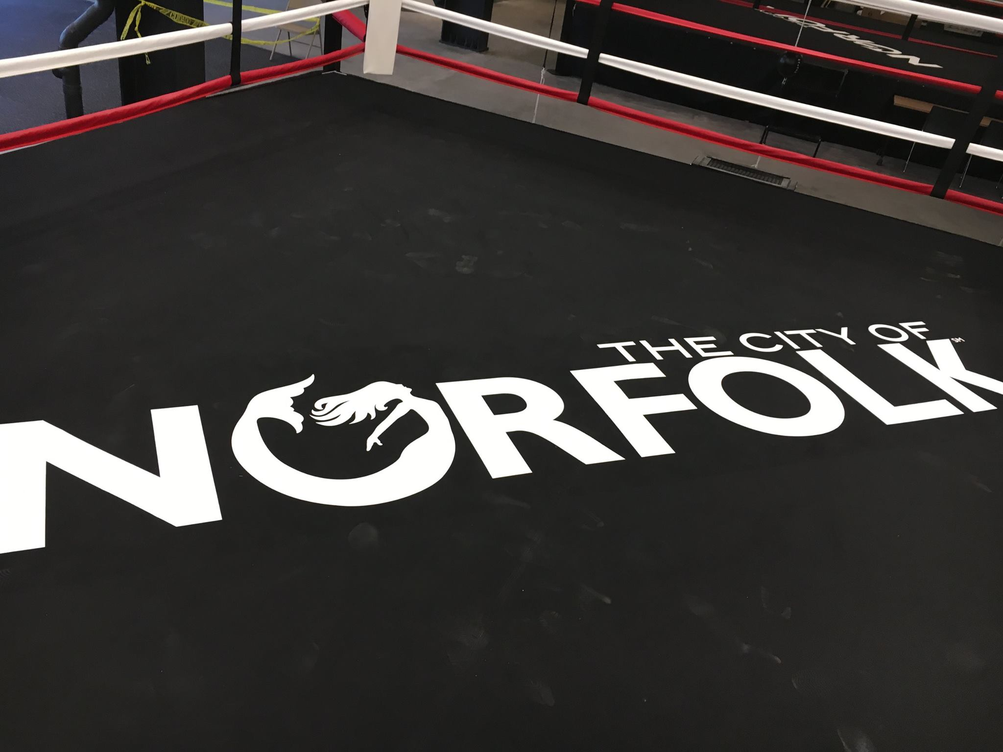 Boxing Ring logo