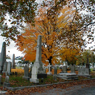 Fall at Cedar Grove Cemetery