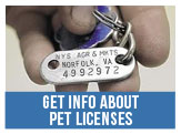Get Information about Pet Licenses and Renewals