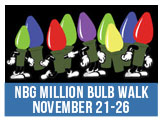 Norfolk Botanical Garden Million Bulb Walk, Friday, November 21 - Wednesday, November 26th