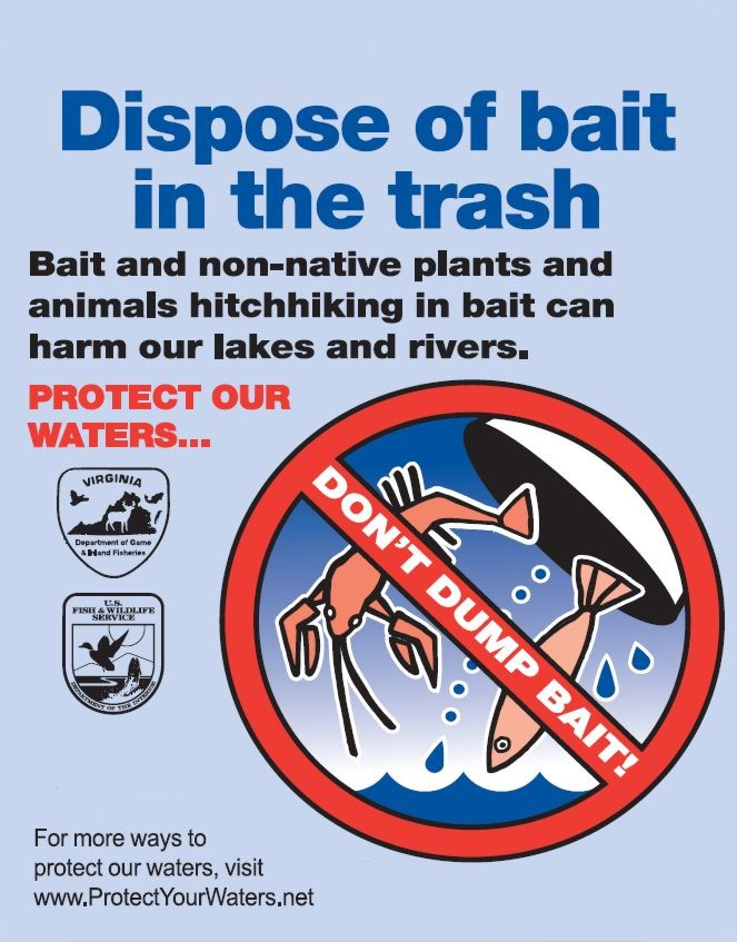 Dispose of Bait